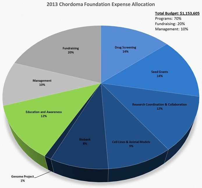 2013 Chordoma Foundation Expenses